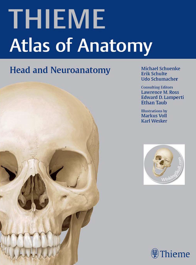 THIEME. Atlas of Anatomy. Schuenke M